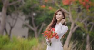 hoaphuong 26 310x165 - Cảm nhận về bài thơ Tràng Giang của Huy Cận